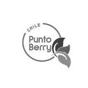 cliente-puntoberry